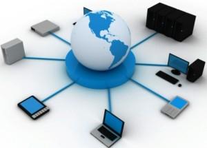 network11